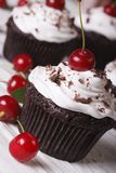 Delicious chocolate cupcakes with cherry close up, vertical Stock Image