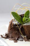 Delicious chocolate dessert Stock Photos