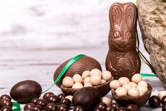 Easter bunny and eggs Royalty Free Stock Photo