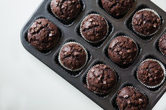 Delicious Chocolate Muffins Stock Photo