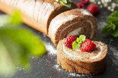 Delicious chocolate roll sponge cake with vanilla cream and mint leaves. Desert sweet food. stock photos