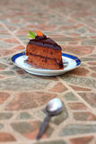 A delicious chocolate sponge cake on the dish delicious. Stock Images
