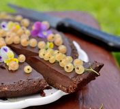 Delicious chocolate tart with berries on the white Royalty Free Stock Photos