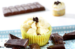 Delicious chocolate-vanilla cupcakes Stock Images