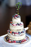 Delicious chocolate wedding cake decorated with fruits Stock Photos