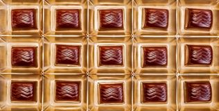 Delicious chocolates in gift box Stock Photo