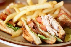 Delicious club sandwich Royalty Free Stock Photo