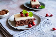 Cocoa cake with cranberries and marzipan glaze stock photo
