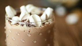 Delicious cocoa drink coffee or hot chocolate, cold beverages with a plate of desserts and chocolate chips and mug full of marshma