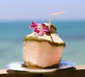 A delicious coconut juice Royalty Free Stock Photos