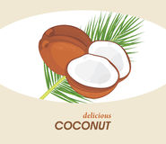 Delicious coconut. Label for design royalty free stock photos