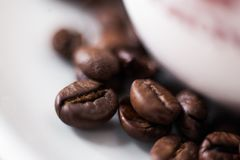 Coffee. Delicious coffee beans for backgrounds on the desktop or for a coffee shop or for an internet shop that sells coffee for a coffee blog royalty free stock images