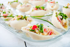 Delicious conchiglie pasta with tuna Royalty Free Stock Photography