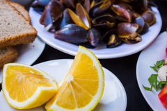 Delicious cooked mussels Stock Image