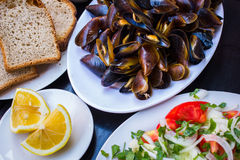 Delicious cooked mussels Royalty Free Stock Photography