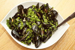 Mussels in a bowl Stock Image