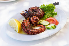 Delicious Cooked Octopus, Served on a Plate Stock Images