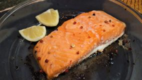 Delicious cooked salmon fish fillets stock image