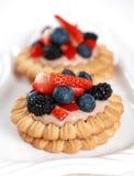 Delicious cookies Stock Image