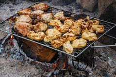 Roasting barbecue chicken over campfire coals stock photography