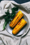 Delicious corn Stock Images