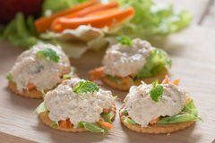 Delicious crackers with tuna salad. Royalty Free Stock Image