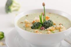 Delicious creamy vegetable soup in  a bowl. Stock Photos
