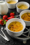 Delicious Creme brulee Stock Images