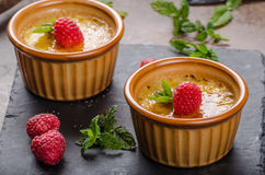 Delicious creme brulee Royalty Free Stock Photo