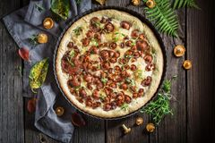 Delicious and crispy tarts with noble mushrooms and thyme Stock Photography