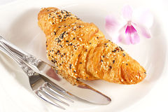 Delicious croissant on white plate Royalty Free Stock Images