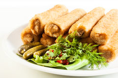 Delicious croquettes with meat and salad Stock Images