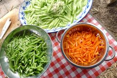 Cucumber salad, carrot and beans Stock Image