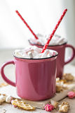 A delicious Cup of cocoa with marshmallows and straws Royalty Free Stock Photography