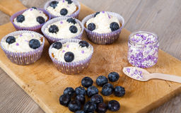Delicious cupcake with blueberries, cream and fresh berries Stock Photos