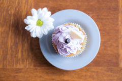 Delicious cupcake with blueberry icing Royalty Free Stock Photography