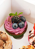 Delicious cupcake decorated with blueberry and blackberries. In paper box Royalty Free Stock Photo