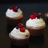Delicious cupcakes with berries Stock Photography