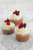 Delicious cupcakes with berries Royalty Free Stock Photography