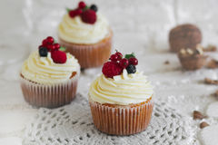 Delicious cupcakes with berries Stock Images
