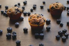 Delicious cupcakes with blueberries Royalty Free Stock Photography