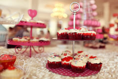 Delicious cupcakes Stock Images
