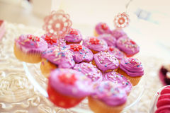 Delicious cupcakes Stock Image