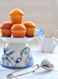 Delicious cupcakes on table on white background Stock Images