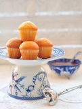 Delicious cupcakes on table on white background Stock Image