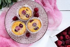 Delicious curd muffins with fresh raspberries, decorated with powdered sugar. On a ceramic plate. Top view Royalty Free Stock Photo