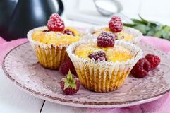 Delicious curd muffins with fresh raspberries, decorated with powdered sugar Royalty Free Stock Photography
