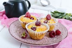 Delicious curd muffins with fresh raspberries, decorated with powdered sugar. On a ceramic plate Royalty Free Stock Images