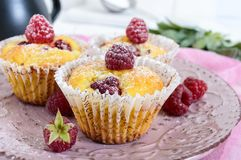 Delicious curd muffins with fresh raspberries, decorated with powdered sugar Stock Photos