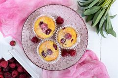 Delicious curd muffins with fresh raspberries, decorated with powdered sugar Stock Photo